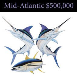 Design for the Mid-Atlantic $500,000 prize used for Hooked on OC's website
