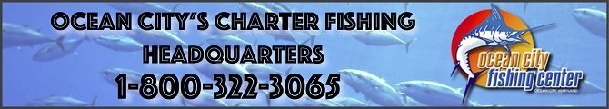 Ocean City Fishing Center banner used for Hooked on OC's website