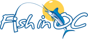 Logo for Fish in OC used for Hooked on OC's website