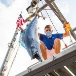 Younger staff member for white marlin open hanging up a wahoo fish