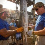 Two staff members holding a white marlin in Ocean City MD