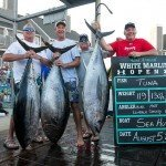 Crew of the Sea Hunt standing with their 3 tuna caught during white marlin open