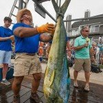 Mahi mahi being hung up with a man holding a microphone behind it in Ocean City MD